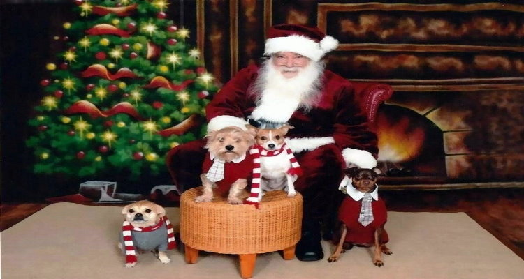 Santa at Pet Adventure750x400